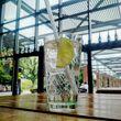 gin-tonic-gangundgaebe