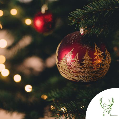 Weihnachtsdinner - die Feiertage im Waldgasthaus Steinbach genießen